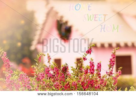 sweet dreamy and de-focused home sweet home message on vintage background bush of pink flowers in garden hamony with pink houses