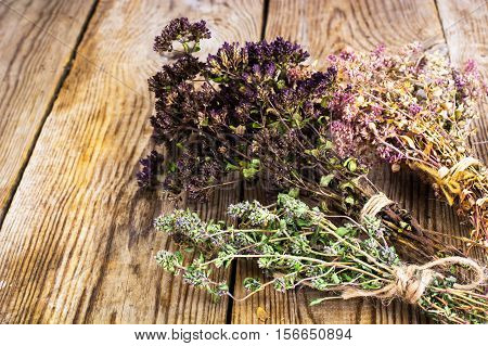 Dried Flowers and Stems of Thyme Studio Photo