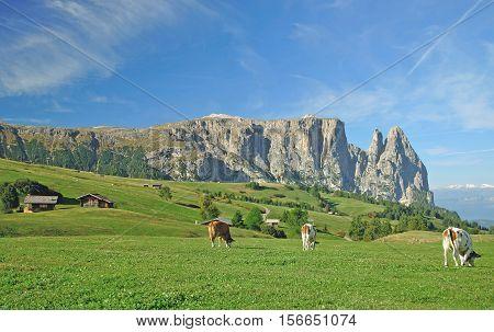 View to famous Mount Schlern on Seiser Alm,South Tirol,Dolomites,Italy
