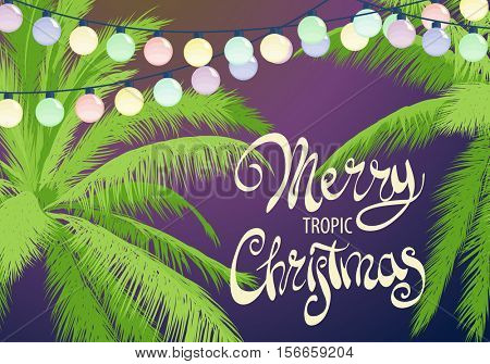 Original Christmas palm trees decorated with colorful garland and the words Merry Christmas