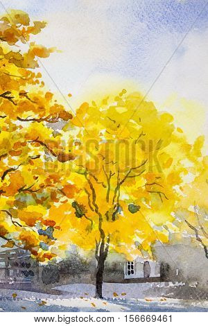 Painting landscape watercolor original colorful of golden tree leafs with wooden house and blue sky background
