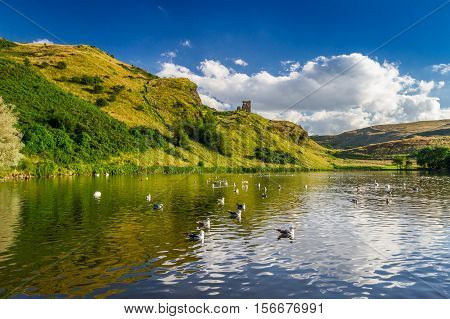 View Of The Mountains Reflected In A Lake With Birds