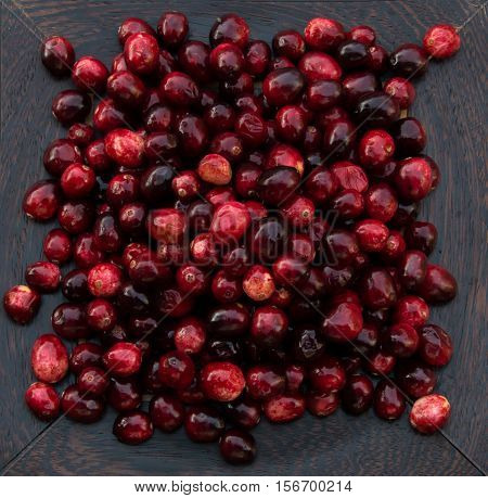 Fresh red and maroon cranberries heaped on a dark wood platter. Photographed close up from above against with shallow depth of field and fill flash.