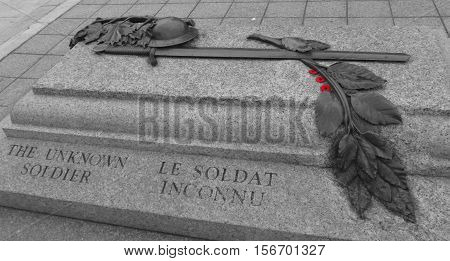 Canadian National War Memorial and Tomb of the Unknown Soldier in Ottawa, Canada in Black and White with red poppy flowers