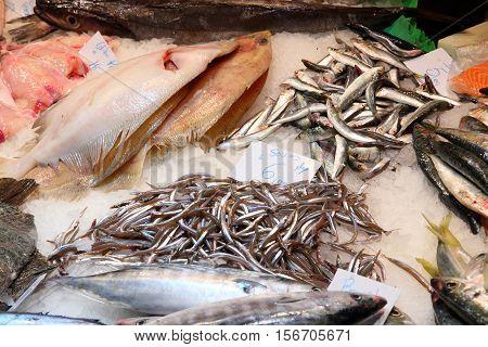 Fresh Sea Food