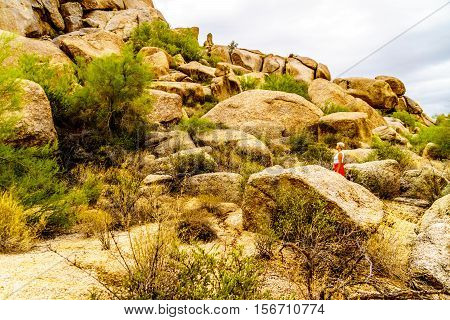 Senior Woman amidst Cacti, Shrubs and large Rock Formation and Boulders in the desert near Carefree, Arizona, United States of America