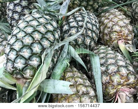Pineapples on sale in the wholesale market in Thailand.