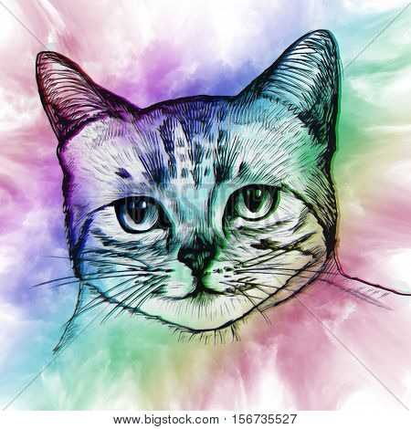 Colorful Cat In Abstract Ornate. Illustration Can Be Used In Posters, Printing On T-shirts And Other
