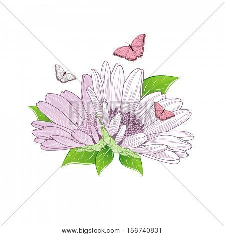 Beautiful abstract floral background with hand-drawn flower chamomile and butterflies. Vector illustration. Element for design.