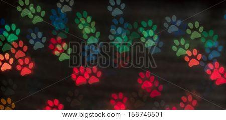 dog foot bokeh light as background. Blurred Colorfull bokeh.