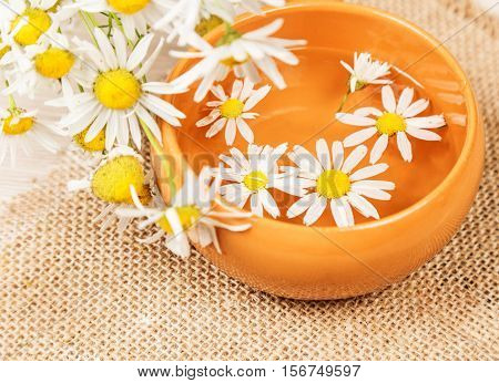 Drug chamomile, pottery bowl with an aqueous solution on jute cloth