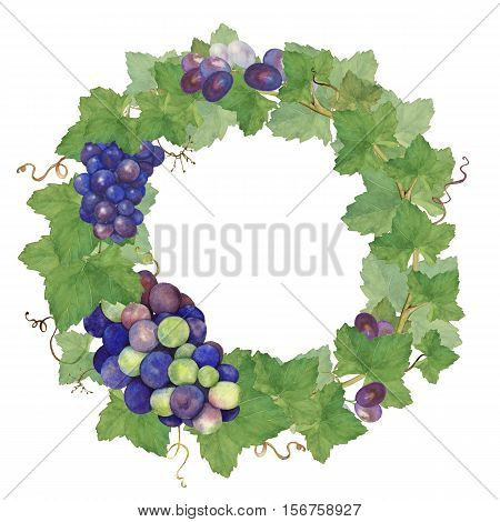 Wreath of grape.Watercolor painting. Hand drawing. To make labels, invitations, posters.
