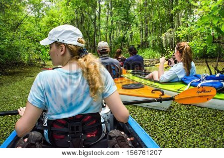 New Orleans, USA - July 11, 2015: People kayaking in still water swamp pond on tour with leaves floating on water