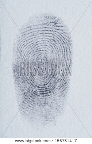 Lines Of Finger Print