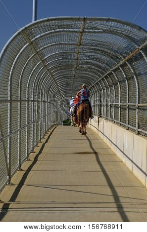 Unidentified riders travel over an enclosed walking bridge on horseback