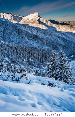 Mountain Peaks In The Winter Dawn In Poland