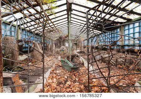 Old abandoned glasshouse or hothouse at Pripyat - ghost city at Chernobyl exclusion zone Ukraine.