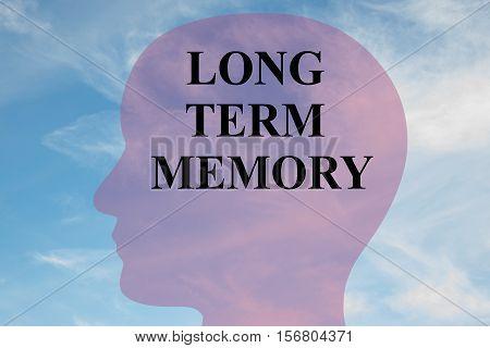 Long-term Memory Concept