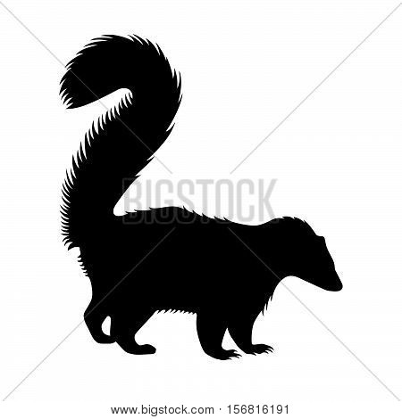 Skunk ( shade picture ) on white