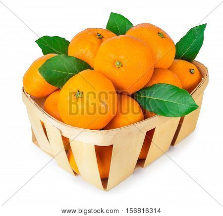 Tangerines with leaves in a basket isolated on white background. Mandarins in a basket isolate. A wicker basket full of fresh orange fruits isolated on white background.