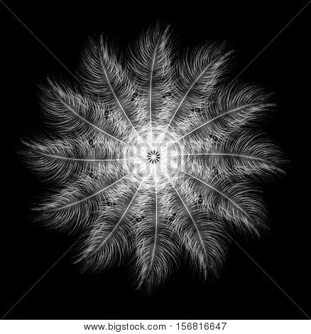 Feathers. Carnival. Creative snowflake. Tropical New Year.