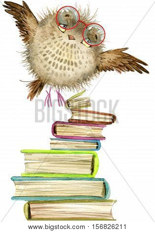 owl. cute owl. watercolor forest bird. school books illustration. cartoon bird