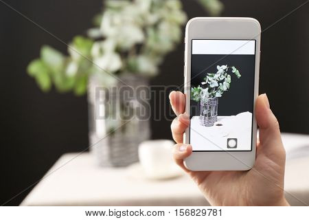 Woman taking photo of green eucalyptus branches in vase