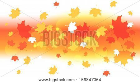 Autumn/thanksgiving Background Poster