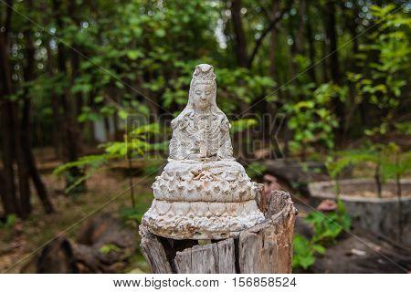 Beautiful the white Guan Yin statue in nature