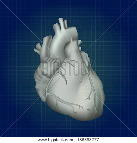 Human heart. Anatomy illustration. Gray image, dark blue science background