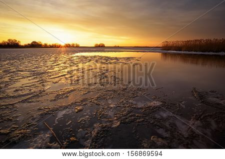 Winter landscape with river reeds and sunset sky. Composition of nature.