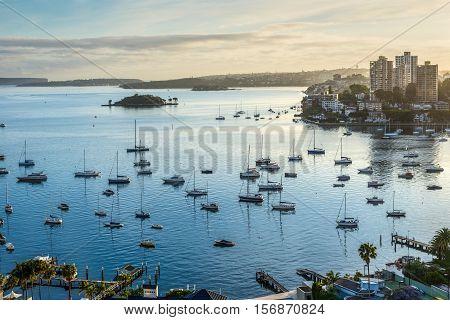 Boats yachts and catamarans bob and tug at their moorings at sunrise Sydney harbor - Australia