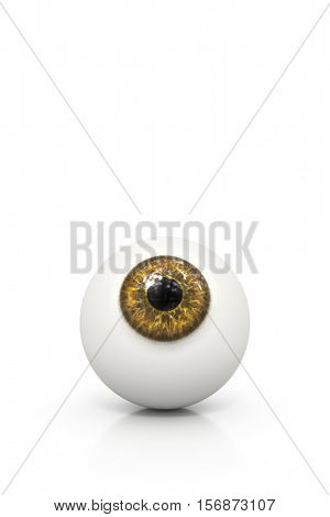3d rendering of a brown eyeball isolated on white