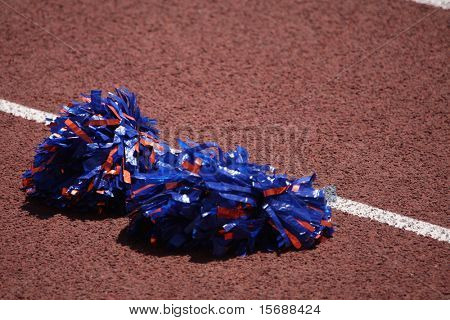 Pompoms on the ground