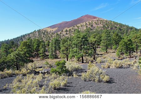 Slope of the cinder cone at Sunset Crater Volcano National Monument north of Flagstaff Arizona