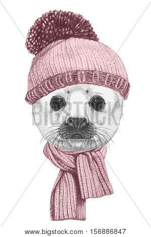 Portrait of  Baby Fur Seal  with scarf and hat. Hand drawn illustration.
