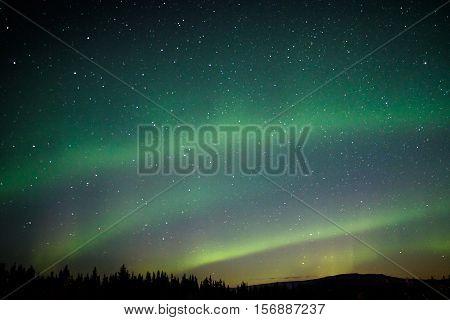 Aurora borealis at the dark sky in Alaska