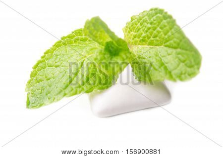 Chewing Gums With Green Mint