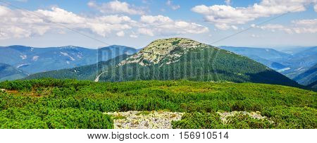 Carpathians mountains hill and summit in summer day. Panorama landscape of blue Carpathian mountain with green forest trees