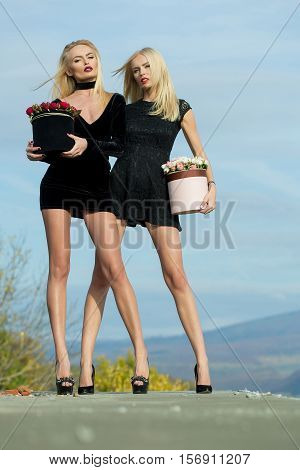 Pretty cute girls or beautiful blond women twins has long legs in sexy black dress with red and white rose flowers in box outdoor on natural background with blue cloudy sky