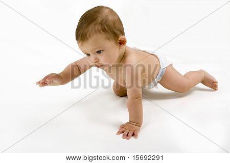 Baby crawling, isolated on white