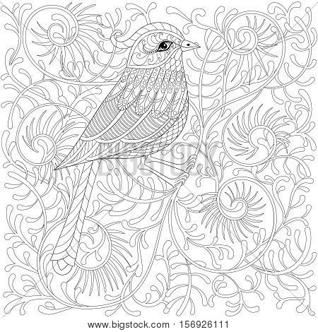 Vector zentangle Bird. Cartoon exotic and tropical hummingbird on branch in patterned doodle style. Hand drawn sketch for adult antistress coloring page book, t-shirt print, tattoo, art logotype.