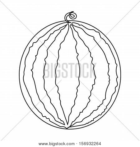 Watermelon icon in outline style on white background. Fruits symbol stock vector illustration.