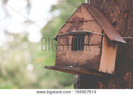 Wooden houses for little birds hanging on a tree, vintage tone.