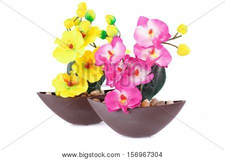 Yellow and pink artificial orchids in vase isolated on white background.