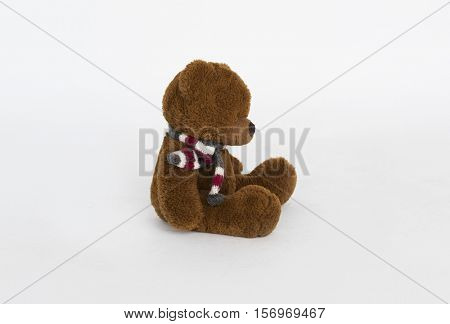 Plush Scarf Bear Sit Memories Concept