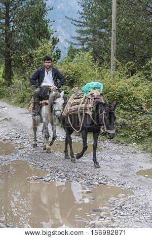 Tel Aviv, Israel-21 September, 2016 : Typical transportation on donkey in Theth, Albania