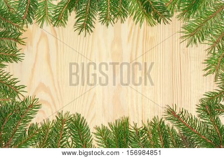 Background of wooden surface made of the light spruce planks and fir branches on the perimeter