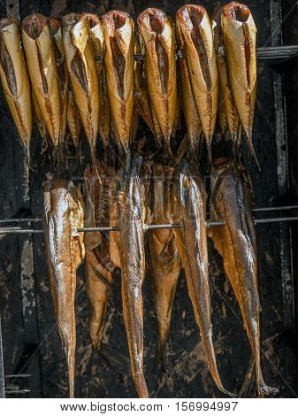 Fresh marine fish from smokehouse