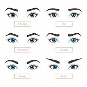 6 basic eyebrow shape types. Classic type and other. Vector illustration eyebrows with eyes - stock vector illustration with captions. Fashion female brow. Trimming. poster